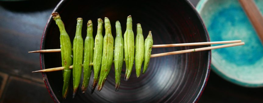 Zielona fasolka wsolance